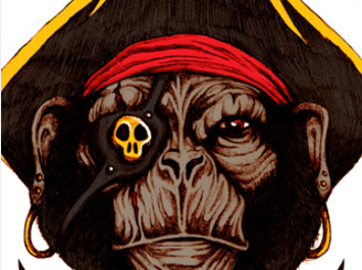 captain monkey by StevenToang