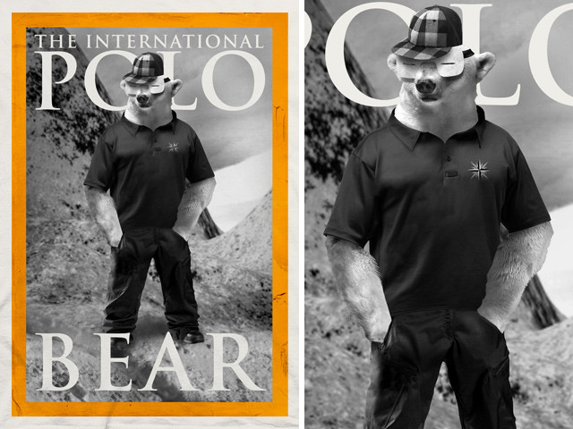 The International Polo Bear