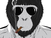 Cobbalt wearing Mafia of the Apes by Hemantsharma