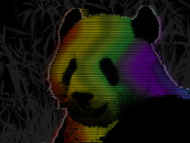 panda in Technicolor by sebasebi