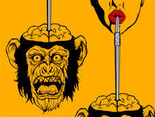 Cóctel Primate T-Shirt Design by