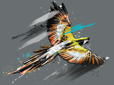 fly T-Shirt Design by