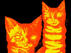 Friskies of the damned T-Shirt Design by