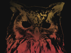 Hedwig T-Shirt Design by