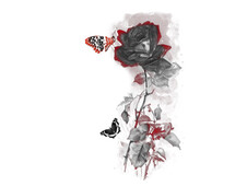 Roses and Butterfies T-Shirt Design by