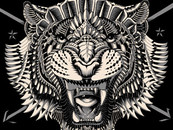 Eye of the Tiger by BioWorkZ