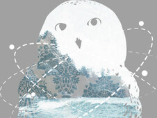 Seaside Owl T-Shirt Design by