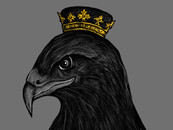 Black Hawk Crown by robbyiodized