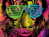disco tiger by graphicollapse