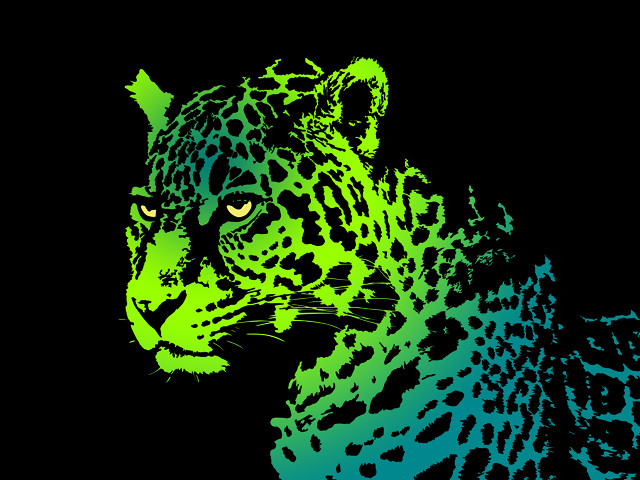 Citrus Jaguar