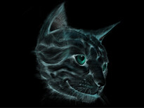 cat's eye T-Shirt Design by