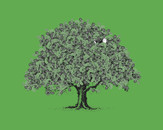Paisley Tree by SIMES