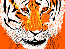 Sumatran Tiger T-Shirt Design by