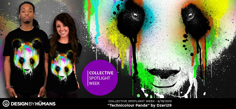 DBH Collective Spotlight