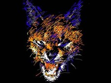 """lynx"" T-Shirt Design by"
