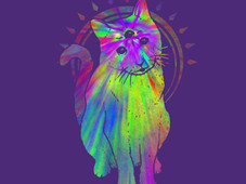 Psychedelic Trippy Cat T-Shirt Design by