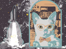 My Sweet Cat Go to The Moon T-Shirt Design by