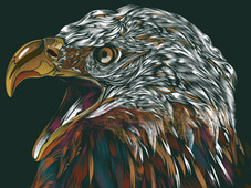 SOARING EAGLE T-Shirt Design by