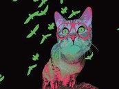 Mr Cool Cat Green by wildart