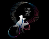 Fleetwood Mac - Visual sounds by Le_Brimet