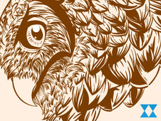 Owling T-Shirt Design by