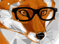 Cool Winter Fox T-Shirt Design by