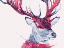 Deer Painting T-Shirt Design by