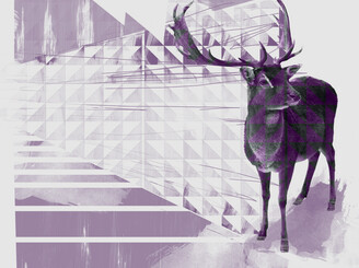 triangles & deer by 1BIGOPIMP