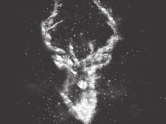 Stag in the Stars