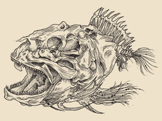 Prehistoric fish T-Shirt Design by