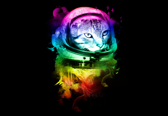 ASTRO CAT  Artwork