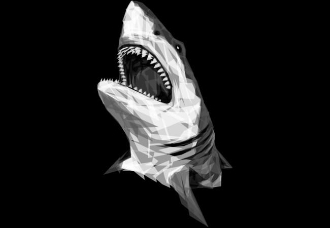 Geometric Shark  Artwork