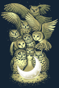 owl and moon