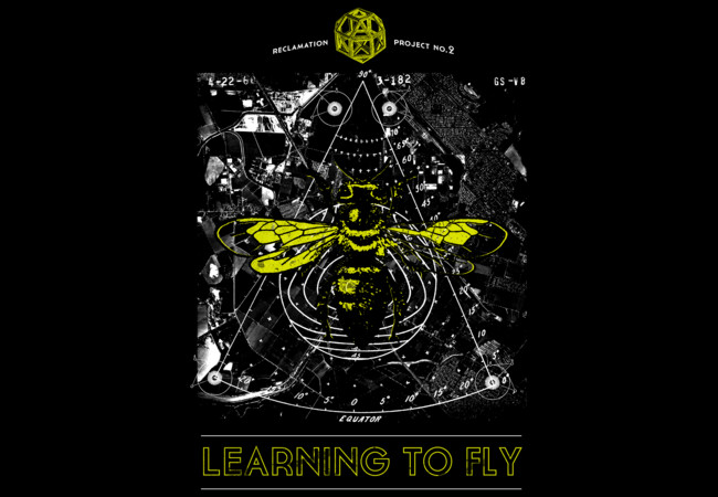 Learning to Fly  Artwork