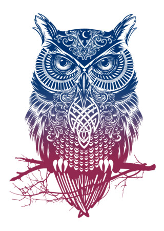 Owl T Shirts graphic tee designs