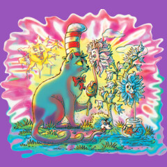Lolliwhimsical Summer With Psychedelic Hat Cat