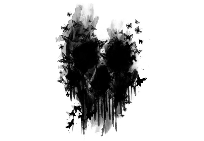 butterfly skull  Artwork