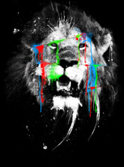 LION: lost RGB