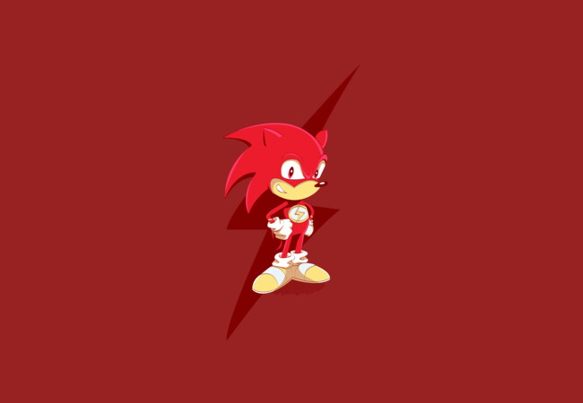 Flash The Hedgehog  Artwork