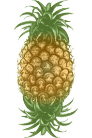 Genetically Engineered Pineapple