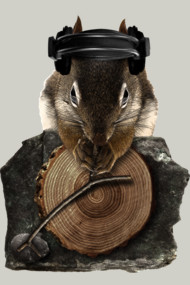 Squirrel DJ