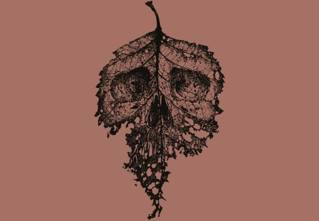 Dead Leaf  Artwork