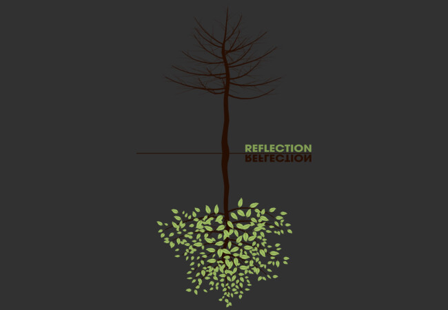 Reflection  Artwork