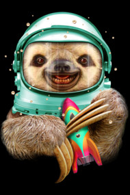 SPACESLOTH