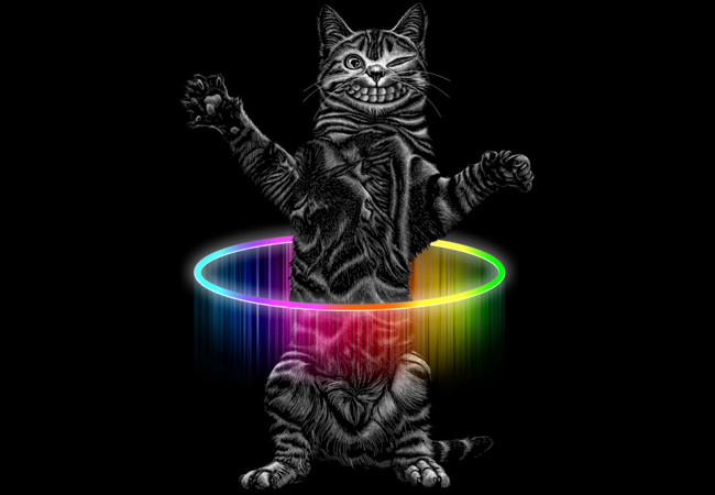 HULA HOOP CAT  Artwork