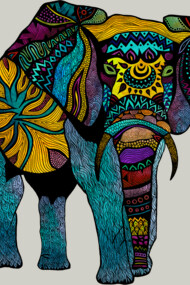 Elephant of Namibia Color