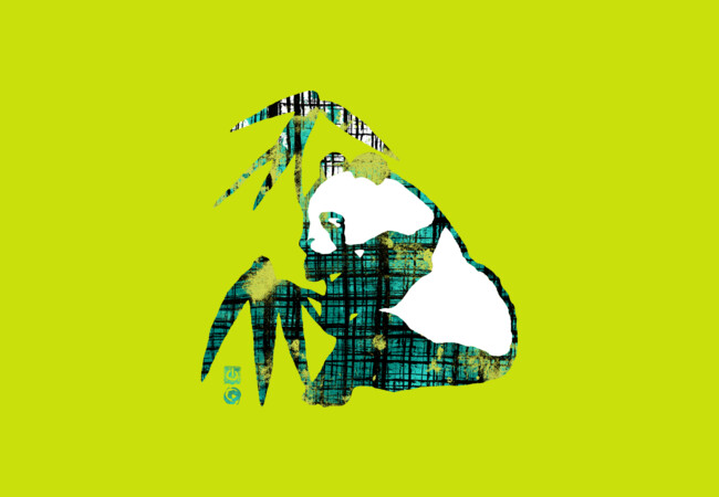 PLAID PANDA  Artwork