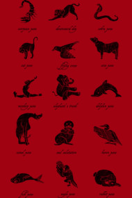 Animal Yogis_Black