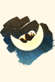 Sleeping Panda On The Moon