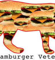 HAMBURGER VETERAN CAT FROM SPACE